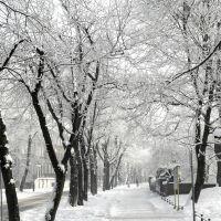 winter walk ...., Пысковице