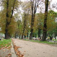 Bytoms Cementary (sb), Руда-Сласка