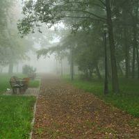 Rybnik, park przed uczelnią, Рыбник