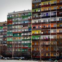 Polens erfolgreichste Platte - Dez.2011, Рыбник