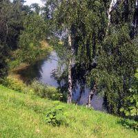 Śląsk zielony. Szopienice: Bagier, Сосновец