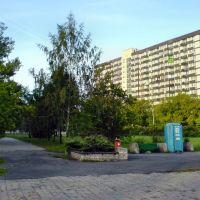 Dabrowa Gornicza - Centrum [2006]-c, Сосновец