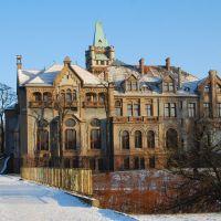 Pałac Schoena 1903, Сосновец