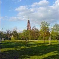 Dabrowa Gornicza - Park Hallera [2007]-b, Сосновец