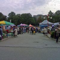 Market Square, Цеховице-Дзедзице