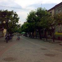 ul. Słowackiego, Czechowice-Dziedzice, Цеховице-Дзедзице