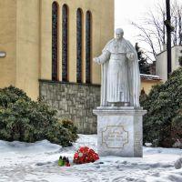 Pope John Paul II Statue, Цеховице-Дзедзице