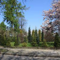 Spring In Lesisko, Цеховице-Дзедзице