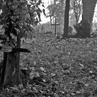 Cmentarz przy ul. Dalkoskiej wrzesień 2008, Конские