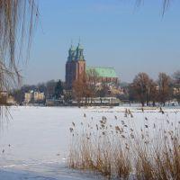 Gniezno  -  zima  2010 ., Конские