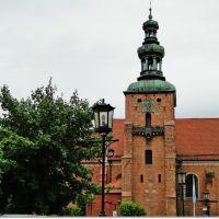 Gniezno.Gotycki kościół farny Św. Trójcy, [ks], Конские