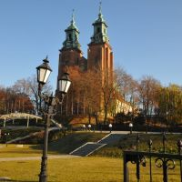 Cathedral of Gniezno, western view, Конские