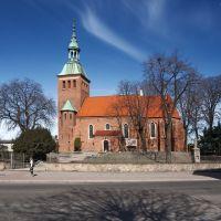 Gniezno, kościół św.Michała, Конские