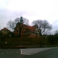 Kościół Św. Trójcy w Gnieźnie, Конские