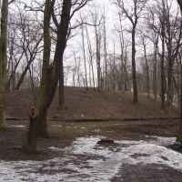 Gnieźninek - wczesnośredniowieczne grodzisko w  Gnieźnie, Островец-Свитокржиски