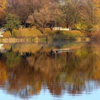 Kolory jesieni  w gnieźnieńskim  jeziorku., Островец-Свитокржиски