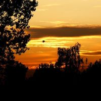 Odlot.... Fly away...., Скаржиско-Каменна