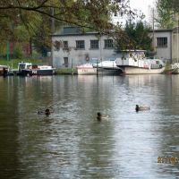 Jeziorak, Илава