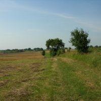 Widok w stronę Ramsowa, Острода