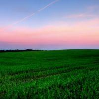 Fields, Вржесня