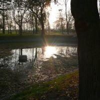 Zabytkowy park w Kleszczewie Zima 2011/2012, Вржесня