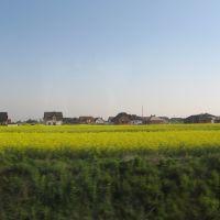 landscape, Вржесня