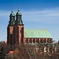 katedra w Gnieźnie, Гнезно