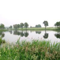 Jezioro Średzkie, Гостын