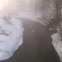 Łabędzie w porannej, zimowej mgle... :), Калиш