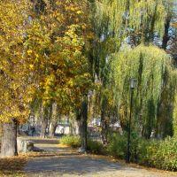 PARK KALISZ barwy jesieni 17, Калиш