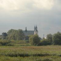 Kościół Nawiedzenia NMP i klasztor bernardynów w Kole, Коло