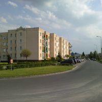 Róg ul. Konwaliowa i Różana, Коло
