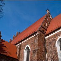 Koło-kościół farny Podwyższenia Krzyża Świętego-gb-3, Коло