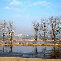 Widok z Trasy Warszawskiej, Конин