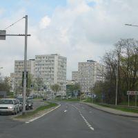Konin (04.2010), Конин