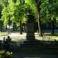 w parku na Placu Kościuszki, Лешно