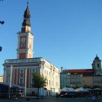Ratusz w Lesznie, Лешно