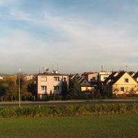 Kostrzyn Wlkp., Любон