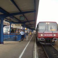Schneidemühl Hauptbahnhof. Zug nach Konitz, Пила