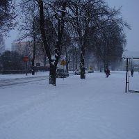winter, Пила