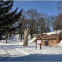 Poznań, Park Cytadela - dla przypomnienia jak wygląda śnieg i słońce zimą.., Познань