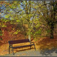 empty bench in the autumn sun, Познань