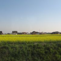landscape, Сваржедж