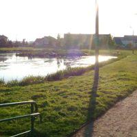 Staw w parku- Turek, Турек