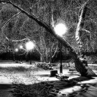 Park Zimą, Турек