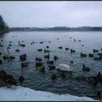jez zamkowe / Zamkowe Lake, Валч