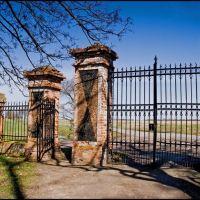 Ktery-dwór Wodzińskich-gb-16, Грифино