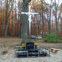 Wdzięczni Bogu Rydzyniacy i Leśnicy 2011, Вилун