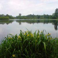 zalew w Łasku, Ласк