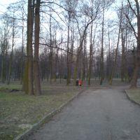 Park miejski, Ласк